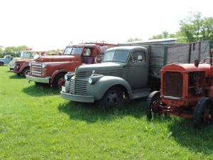 Trucks in the yard